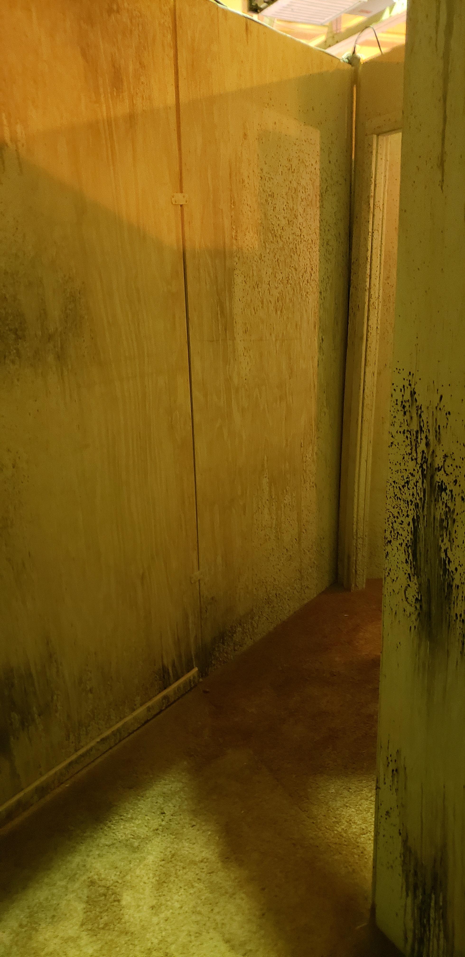 20 hall of Doors 1